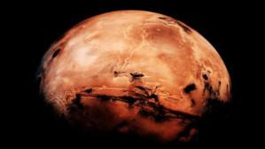 Next Stop: Mars — Riya Sidhu
