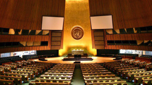 Reflection on the United Nations Youth Assembly 2013 — Rohan Nuttall