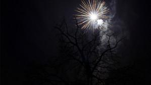 Happy Christmahanukwanzikah? | Hayley Bowling