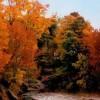 Whitby Ontario Fall